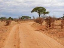Safari in Africa Tarangiri-Ngorongoro. Jeep, road, road to paradise, travel, jeep ride, jeep safari, guide, trees in Africa, safari in Tanzania, savanna in stock photos