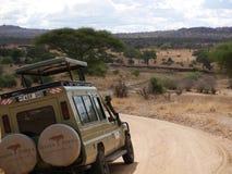 Safari in Africa Tarangiri-Ngorongoro. Jeep, road, road to paradise, travel, jeep ride, jeep safari, guide, trees in Africa, safari in Tanzania, savanna in stock images