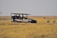 On safari in Africa Stock Image