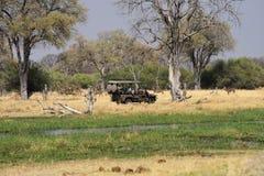On safari in Africa Stock Photos