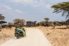 Safari africano do jipe Fotos de Stock Royalty Free