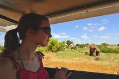 Safari in Afrika Lizenzfreie Stockfotos