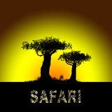 Safari in Afrika Stockfoto