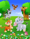 Safari animal de collection dans le jardin Photo libre de droits
