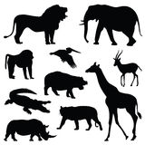 Safari animal silhouette illustration set Stock Photos