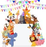 Safari Animals-beeldverhaal die Partijhoeden dragen Stock Afbeelding
