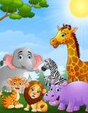 Safari animals cartoon stock illustration