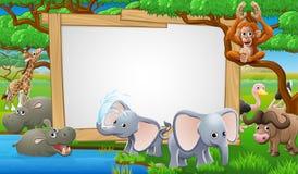 Safari Animals Cartoon Sign Photographie stock
