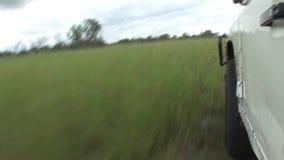 Safari bagnato di Arfica della terra del fileld di guida di veicoli stock footage