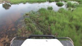 Safari bagnato di Arfica della terra del fileld di guida di veicoli archivi video