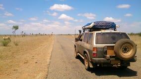 Safari campo a través del desierto imágenes de archivo libres de regalías