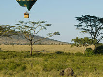 Safari by car and balloon stock image