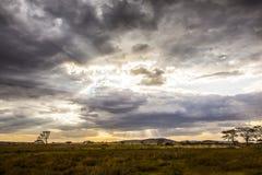 Safari car driving in beautiful and dramatic african landscape Stock Image
