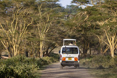 Safari Car In Kenya, editorial Fotos de archivo