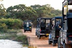 Safari. Convoy of off-road vehicles Stock Photography