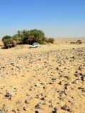 Safari dans le désert, Sahara Image stock