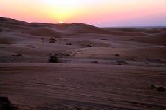 Safari de désert Images libres de droits