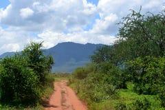 Safari de Kenia Imágenes de archivo libres de regalías