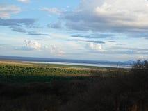 Safari de Manyara de lac dans Afric photographie stock libre de droits