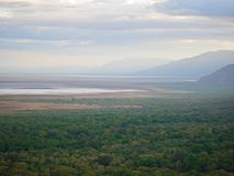 Safari de Manyara de lac dans Afric image libre de droits