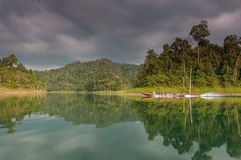 Safari de Tailandia Fotos de archivo