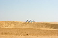 Safari in de woestijn Royalty-vrije Stock Foto's