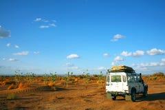 Safari in de Woestijn van de Sahara Stock Foto