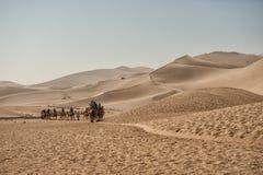 Safari dei cammelli alle dune di sabbia di Mingsha Immagini Stock Libere da Diritti