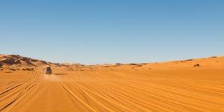 Safari del deserto di Sahara Immagine Stock