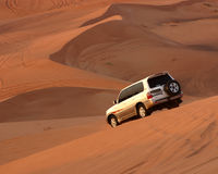 Safari del desierto Fotos de archivo libres de regalías