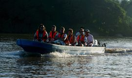 Safari del fiume di Kinabatangan Fotografie Stock Libere da Diritti