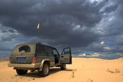 On safari in desert Royalty Free Stock Images