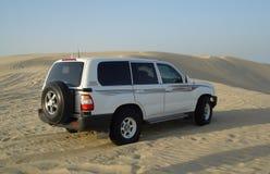 Safari in deserto Immagini Stock Libere da Diritti