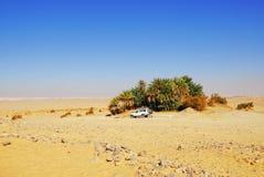 Safari in the deset. EGYPT, SAHARA - DEC 26, 2008: Off-road car shown in the Sahara desert near small green oasis. Extreme desert safari is one of the main local stock photos