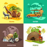 Safari Design Icon Set Images stock