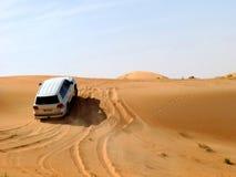Safari do deserto Foto de Stock Royalty Free