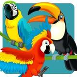 Safari dos desenhos animados - ilustração para as crianças Fotos de Stock Royalty Free
