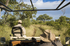 Safari drive in Africa Royalty Free Stock Photography