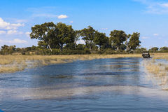 Safari drive in the Okavango Delta in Botswanai Royalty Free Stock Photos