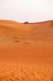 Safari - Dubaj Zdjęcia Royalty Free