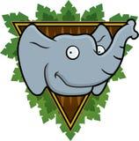 Safari Elephant. An elephant with a safari background Royalty Free Stock Image