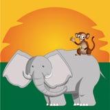 Safari Royalty Free Stock Photography