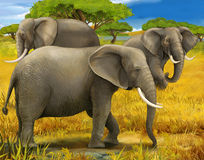 Safari - elephants - illustration for the children Royalty Free Stock Photo