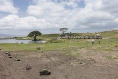 Safari en el cráter de Nogorongoro Fotografía de archivo