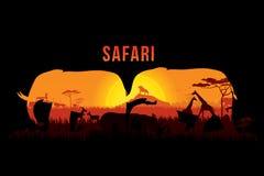 Safari en het wild vector illustratie