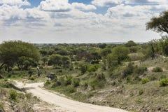 Safari en Tarangire fotografía de archivo libre de regalías