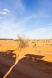 Safari-Fahrzeugschattenbilder Lizenzfreies Stockfoto