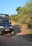Safari fotografico Parco nazionale di Yala La Sri Lanka Fotografie Stock