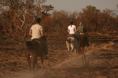 Safari game watching. Horse riding Stock Photo