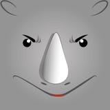Safari Stock Images